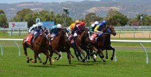 horse-racing-358907_960_720